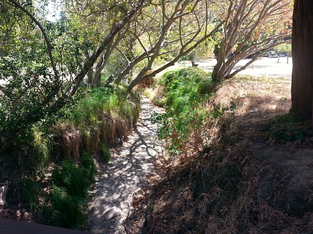 Dry stream in John Muir's orchard