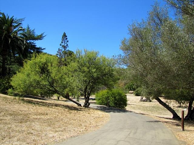 John Muir's orchard