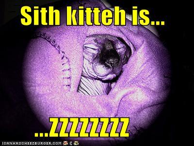 Sith Kitsy