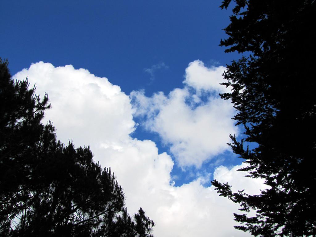 Clouds over McLaren Park