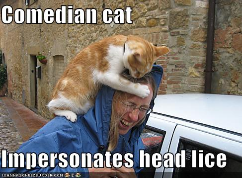 headcat