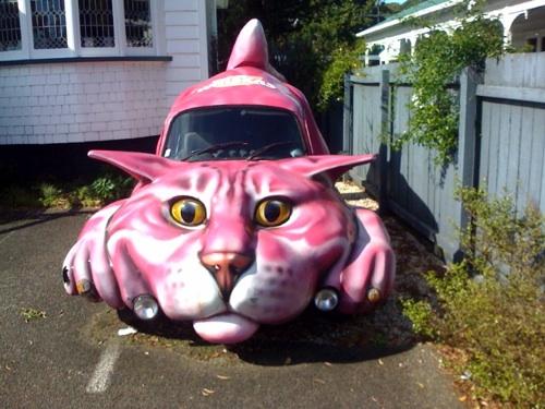 the catmobile