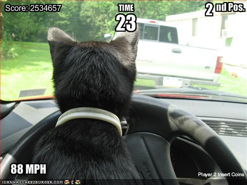 Auto Racing Disasters on Circus Funny Pictures Cat Is In A Racing Game     Jellybeansofdoom Com