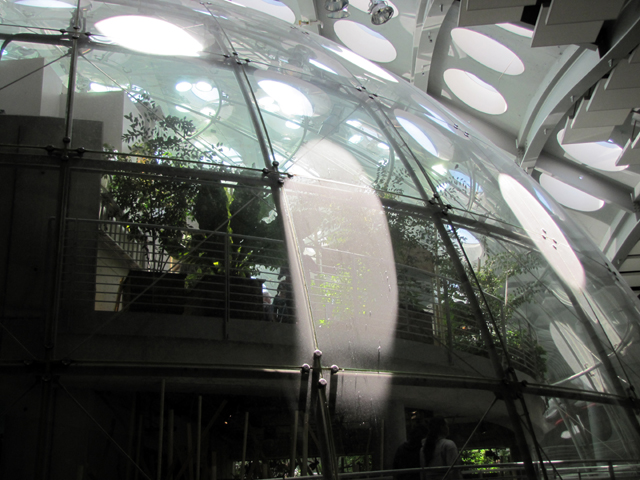The light from the skylights are reflected on the dome of the rainforest