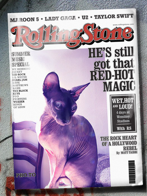 Kitsy Rolling Stones cover