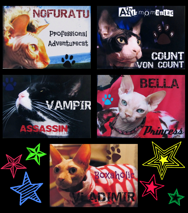 Famous kitty autographs