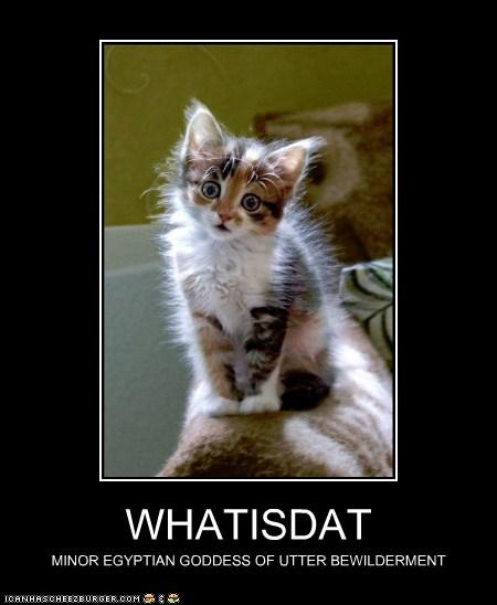 Whatisdat