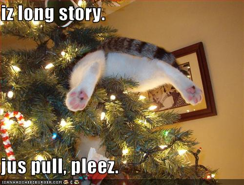 funny-pictures-cat-is-stuck-in-your-christmas-tree