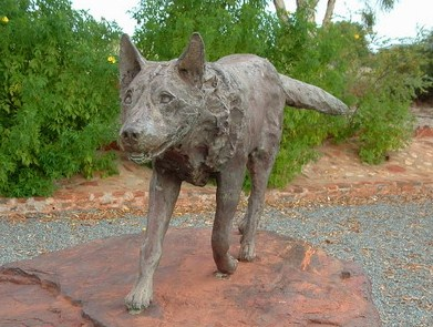 Statue of the real Red Dog in Dampier