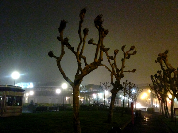 The Embarcadero in the fog