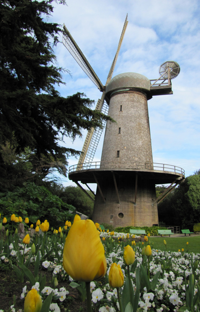 Our restored Dutch windmill