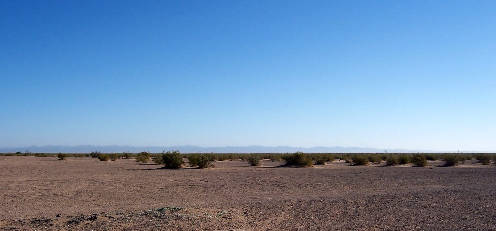 The Sonoran Desert in Southern California