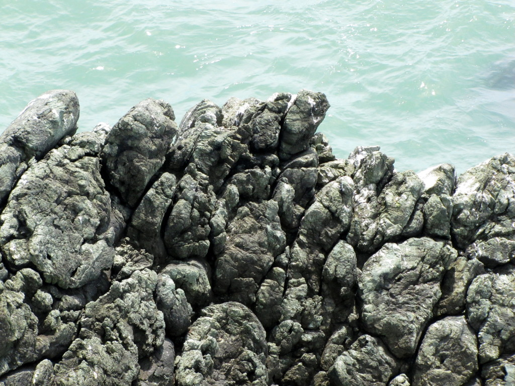 A closeup of the rocks in the previous photo. This is a beautiful example of pillow lava. Photo by Rudha-an