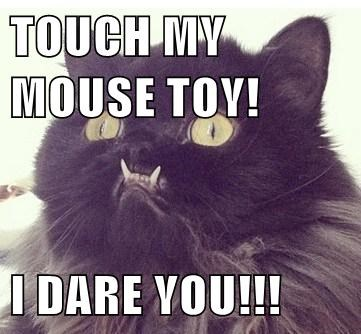 Mouse toy lol