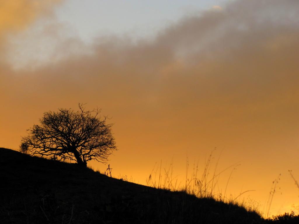 Beautiful glow on Bernal Hill