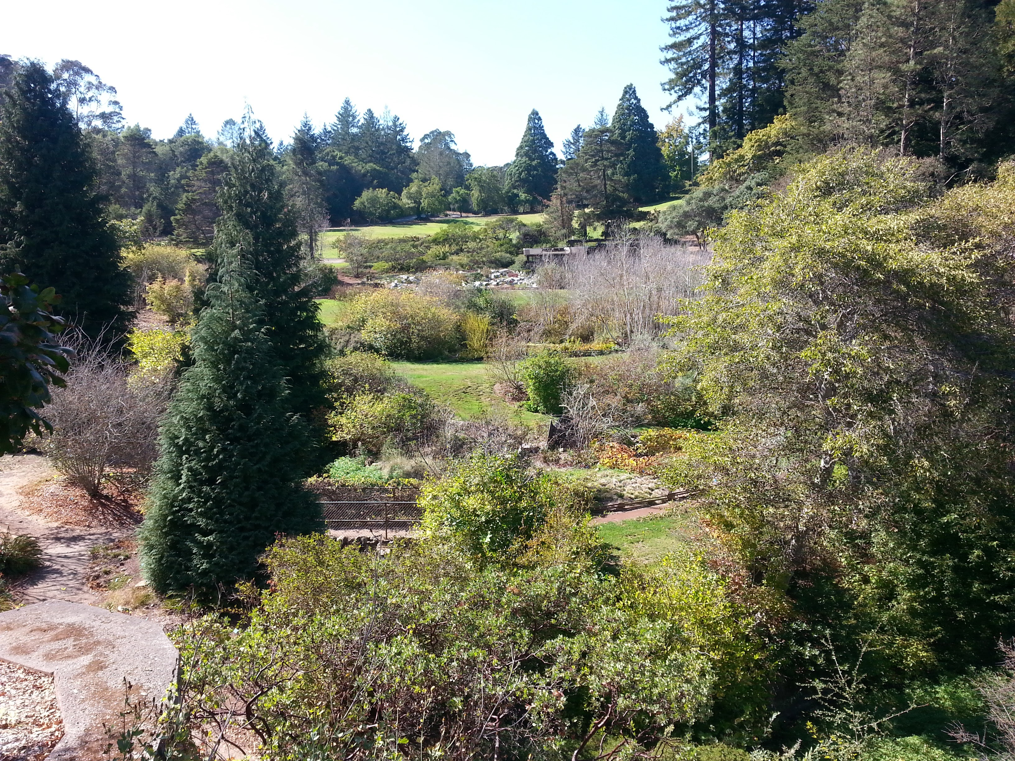 View across the garden from the visitor center